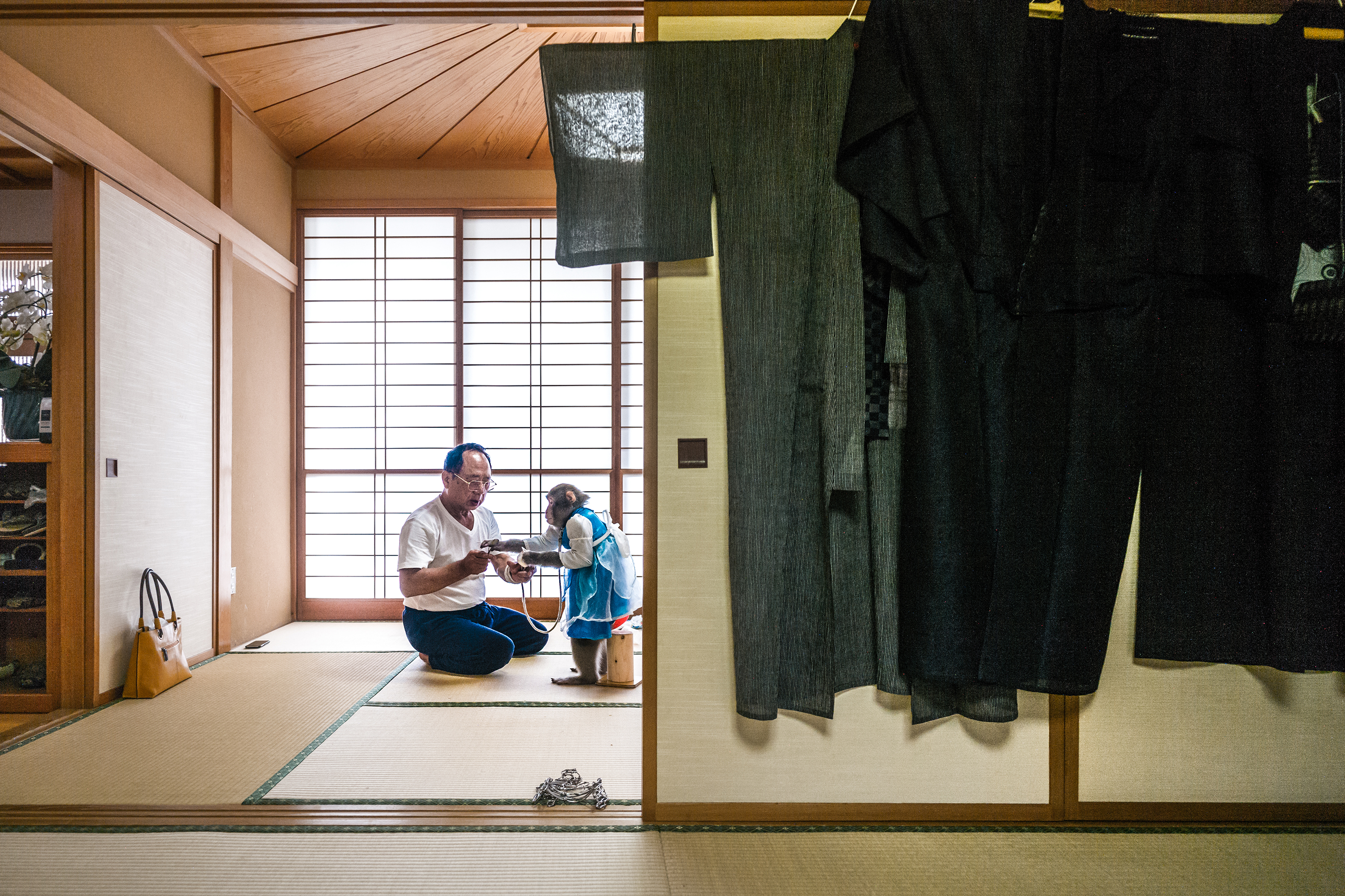 Kaoru Amagai shares his home in Ōta-shi, Gunma, central Japan, with three macaques, which he treats as he would children.