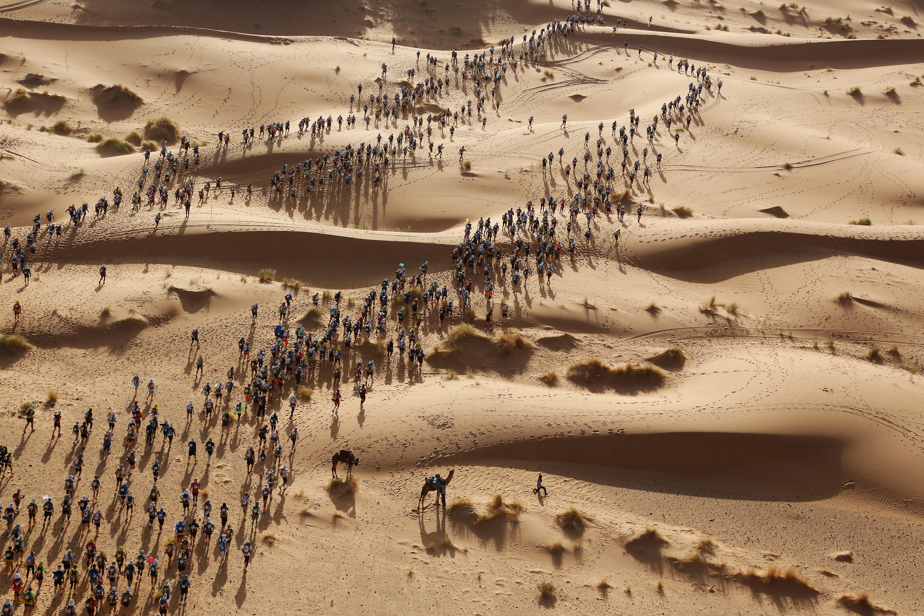 Participants set off on a timed stage of the Marathon des Sables, in the Sahara Desert in southern Morocco.