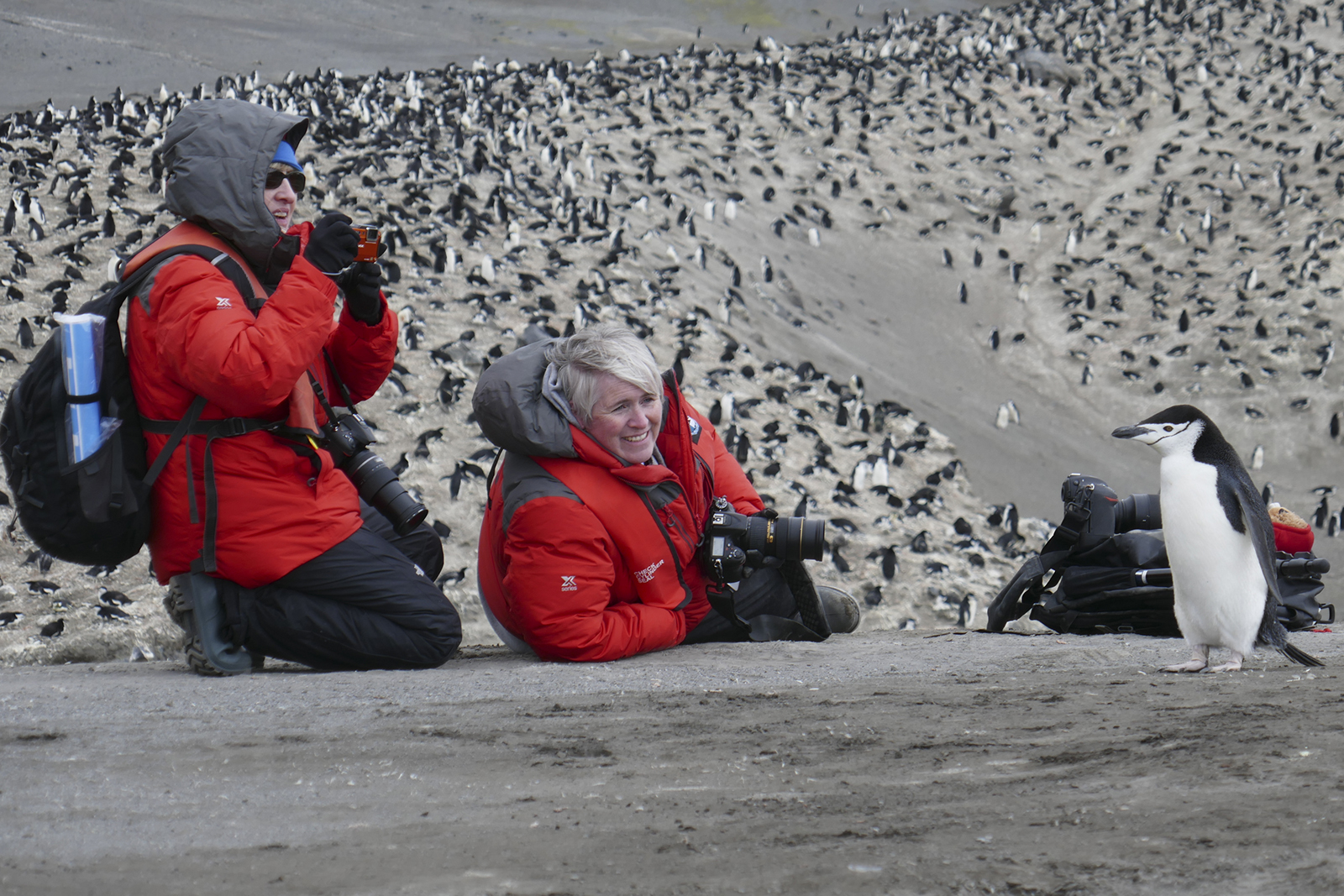 Shelley Ball and Dyan deNapoli photographing chinstrap penguin in Antarctica