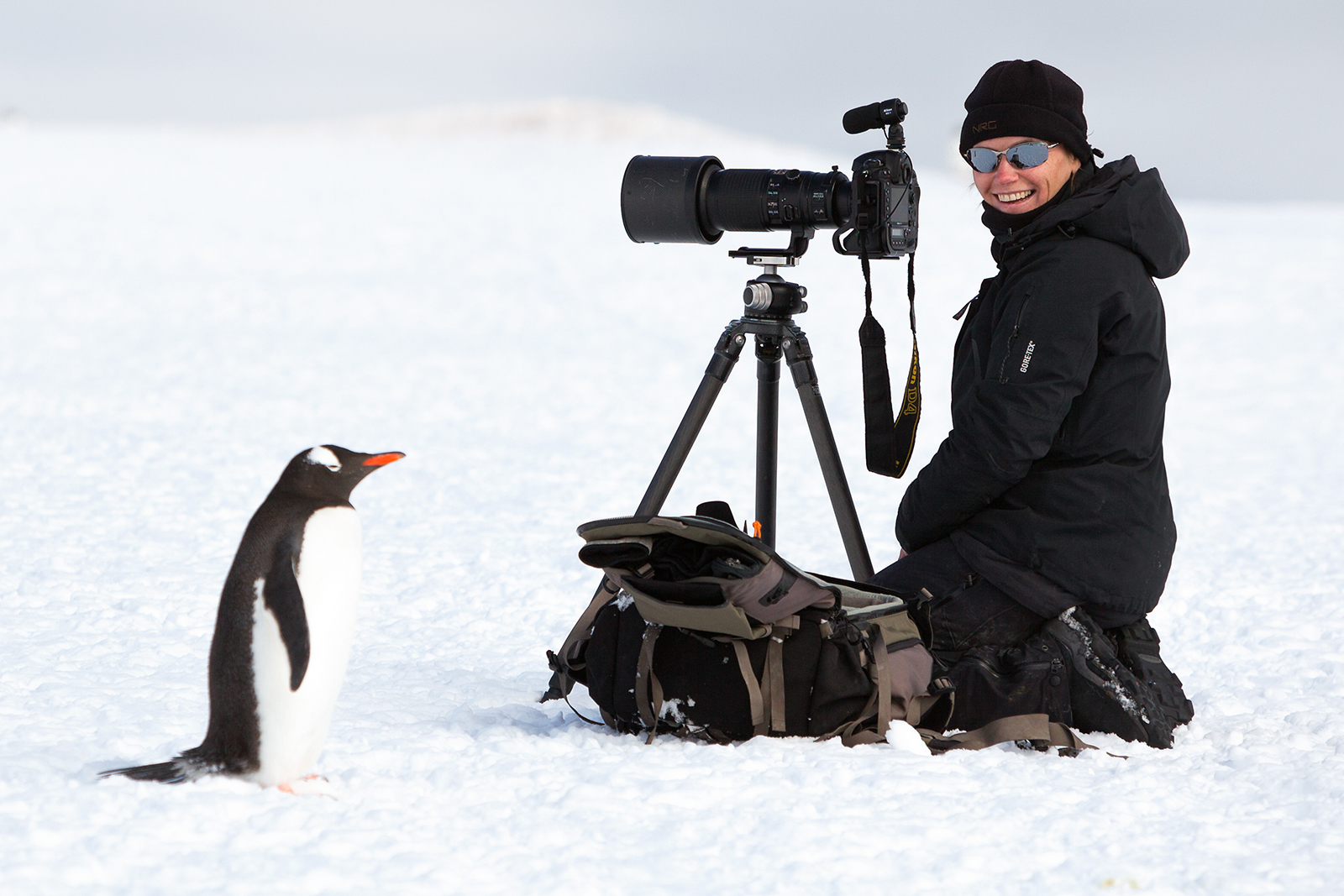 Daisy Gilardini with penguin in Antarctica