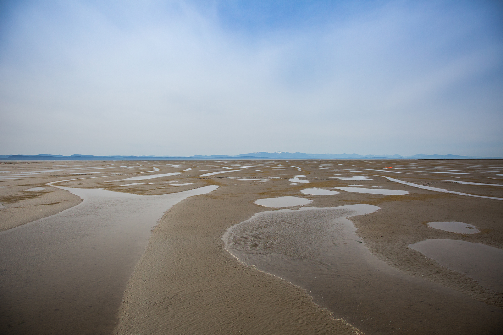 Tidal flats at Brunswick Point in Ladner, British Columbia
