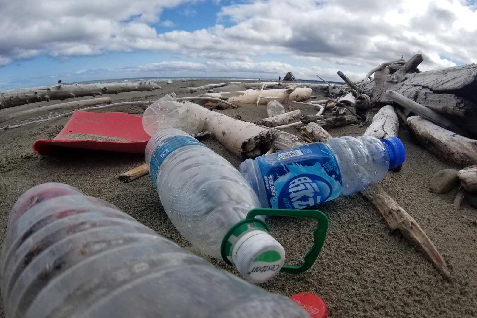 Plastic bottles washed up on beach