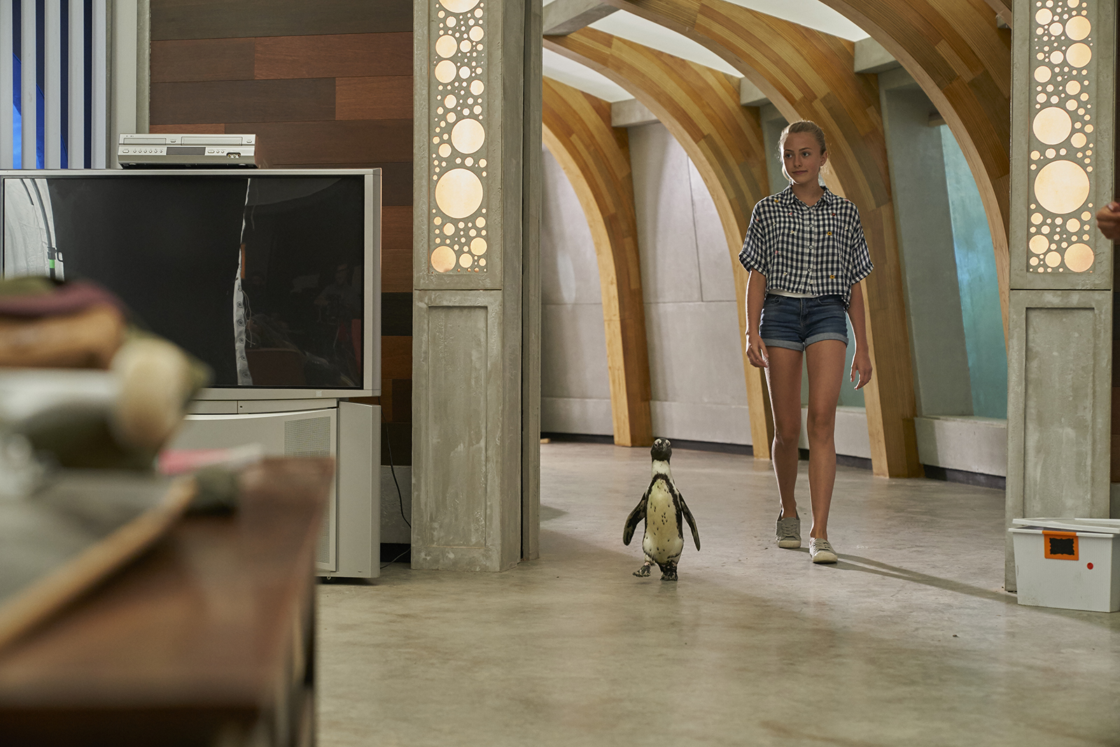 Taylor Thorne and Dayo the African penguin in a scene from Northern Rescue