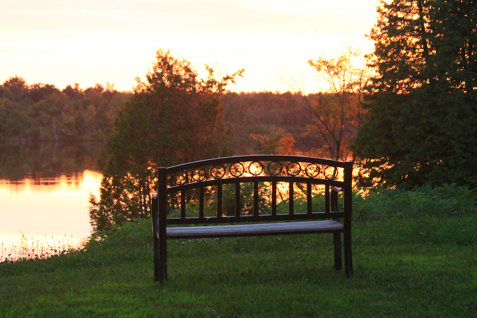 Bench facing water at sunset