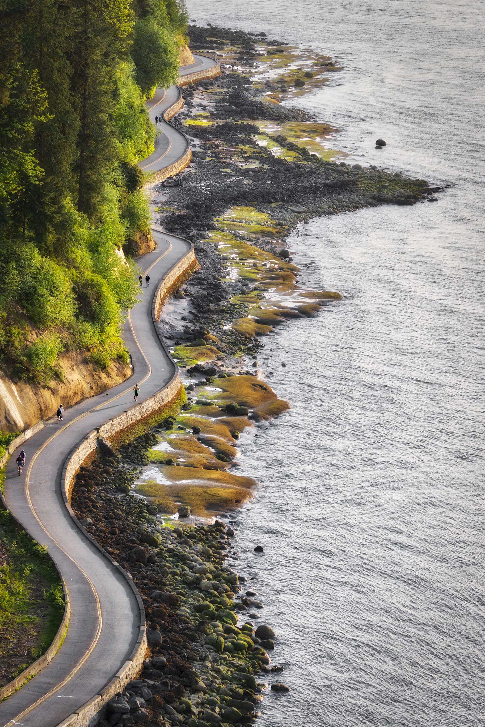 Stanley park seawall by Windy Corduroy