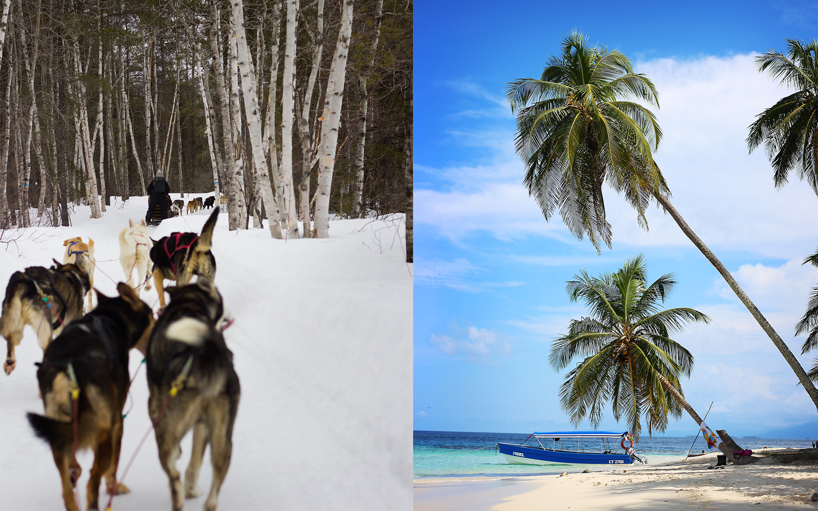 Dogsledding in Quebec and a pristine beach in Panama