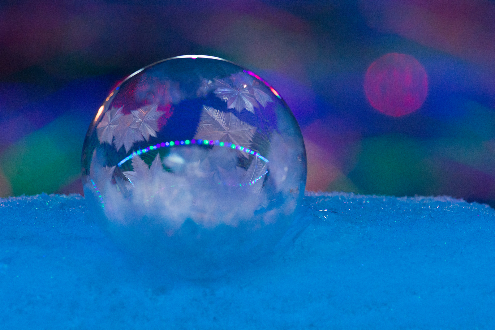 frozen soap bubble reflecting christmas lights