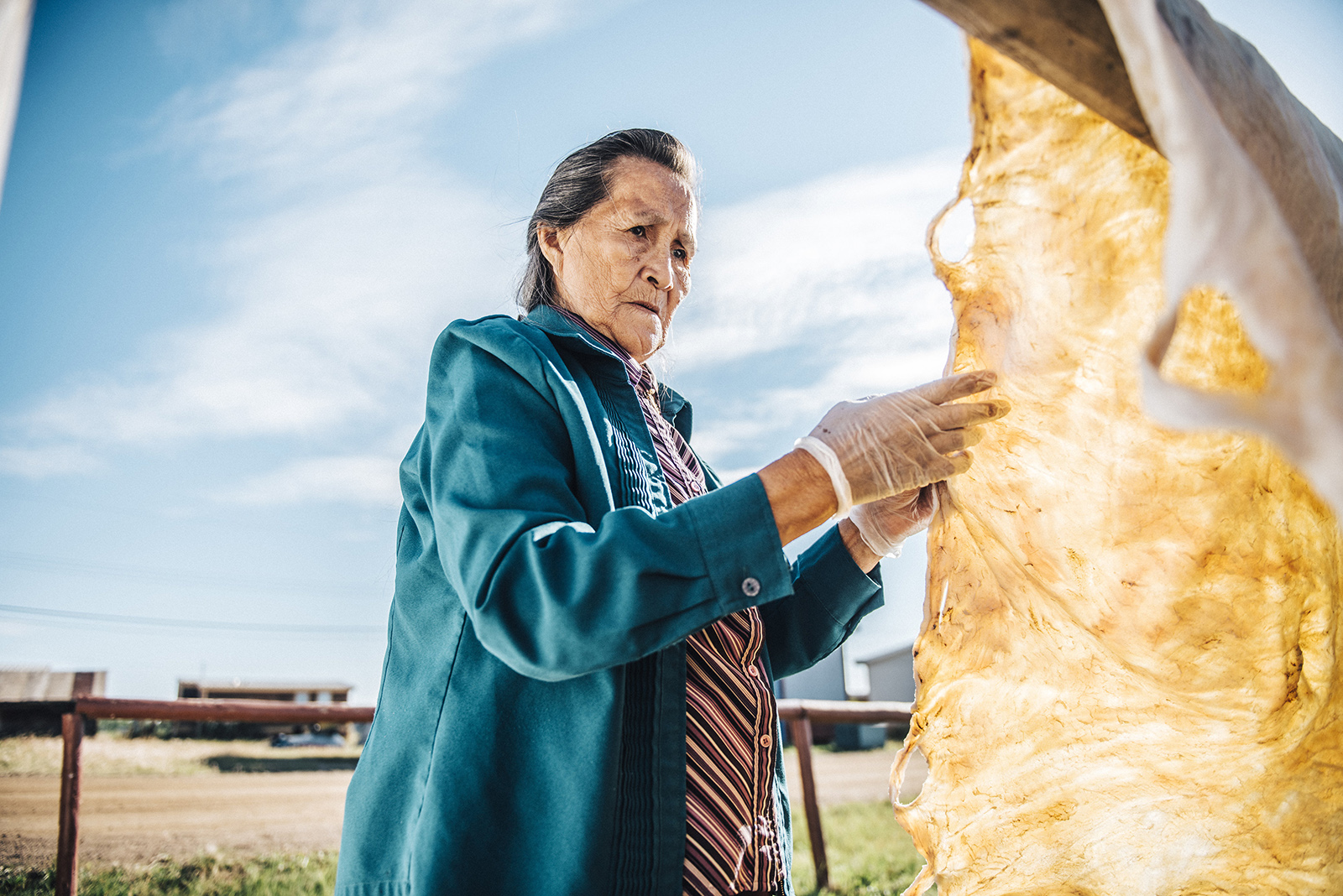 Stella Mackeinzo, a Déine artist, hangs up a moose hide to dry