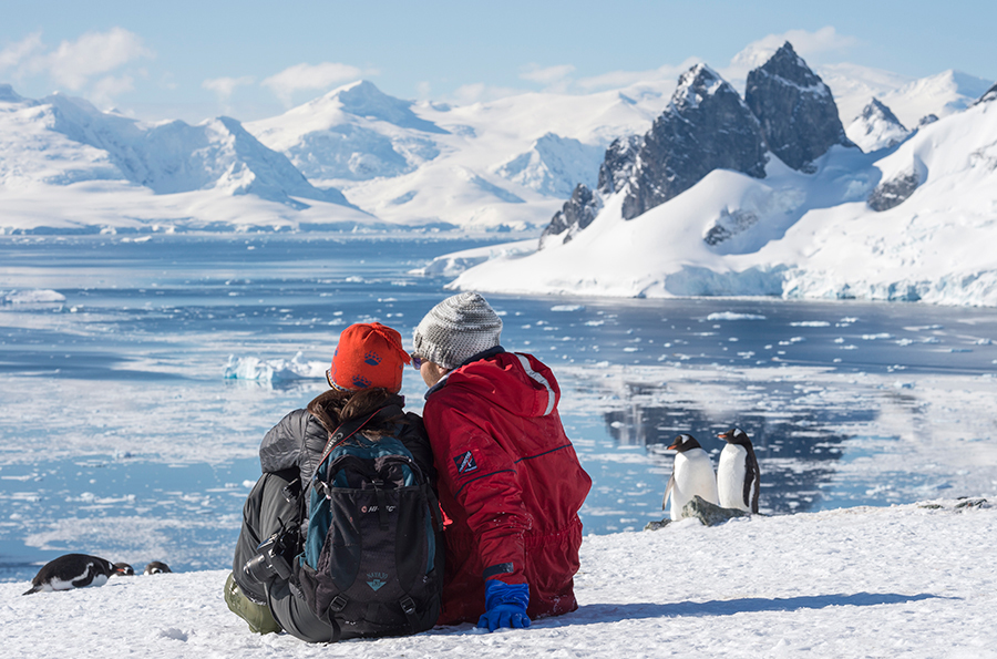 Polar parrots of the Aynov Islands. Expedition to the extreme north of Russia 88