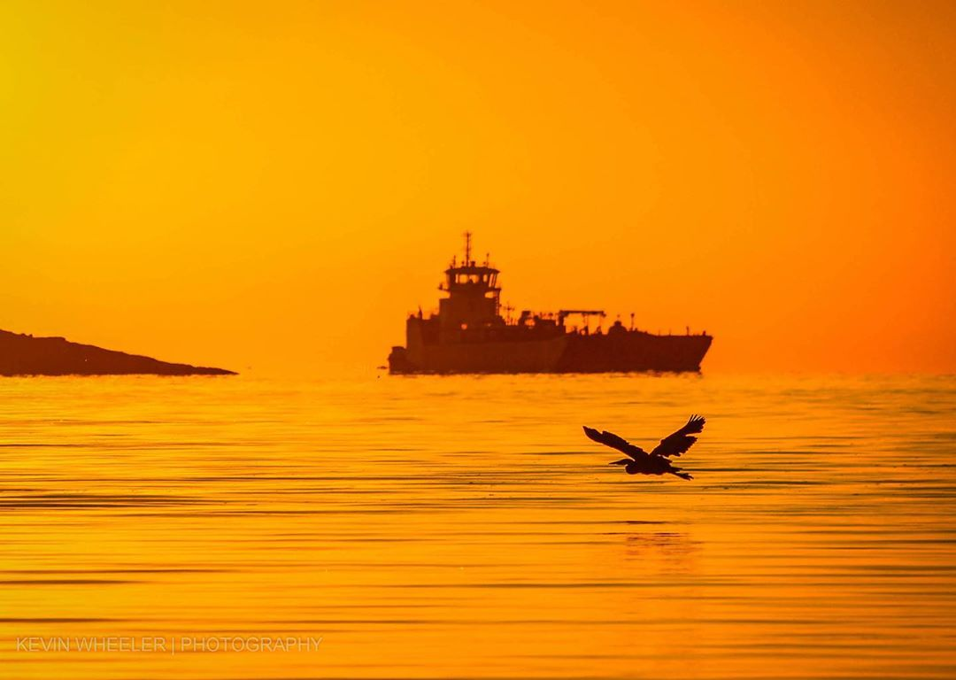 A ship sails through the water against an orange sky