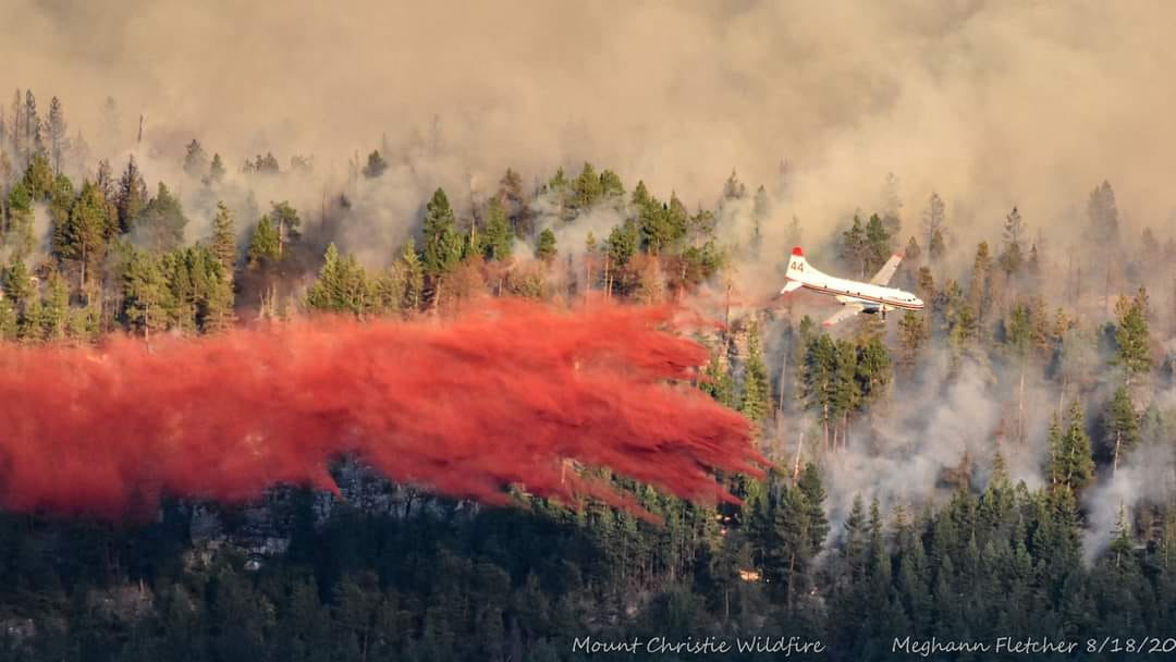 A plane released red powder over a wildfire in the forest