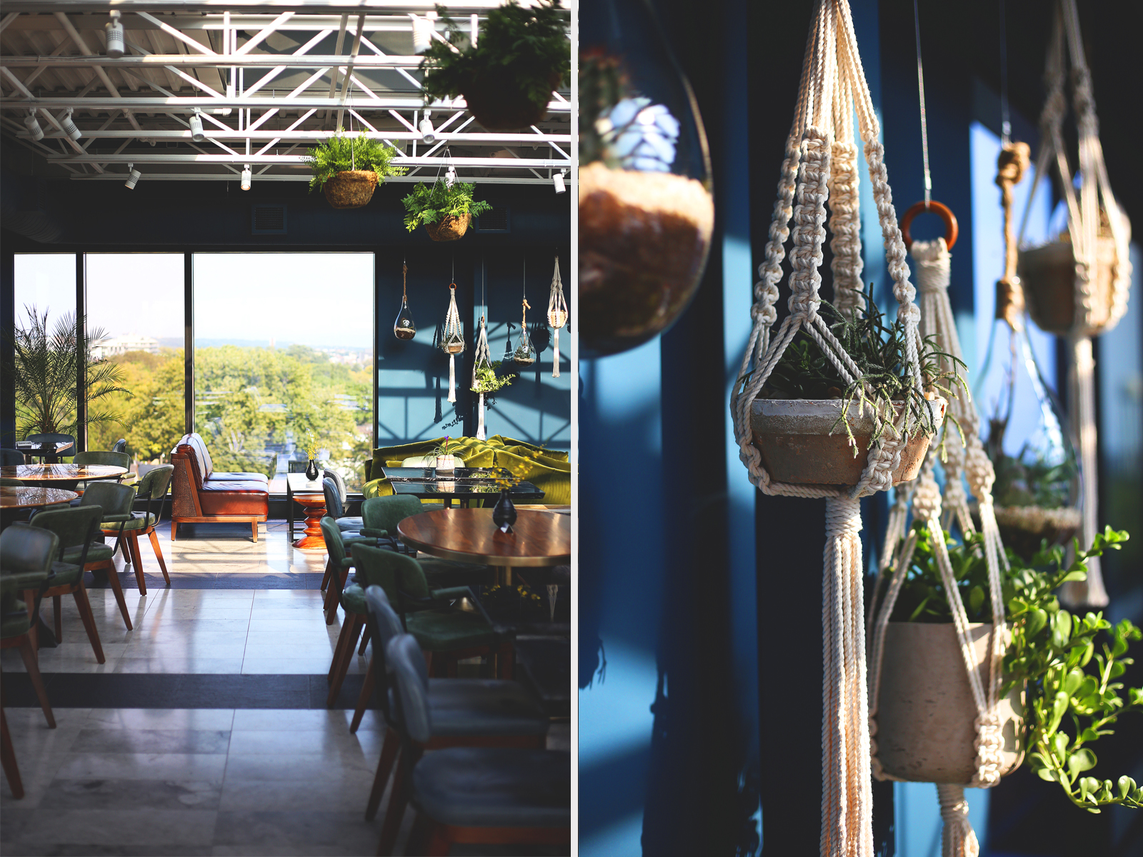 jewel tones and succulents at Broadview Hotel rooftop lounge
