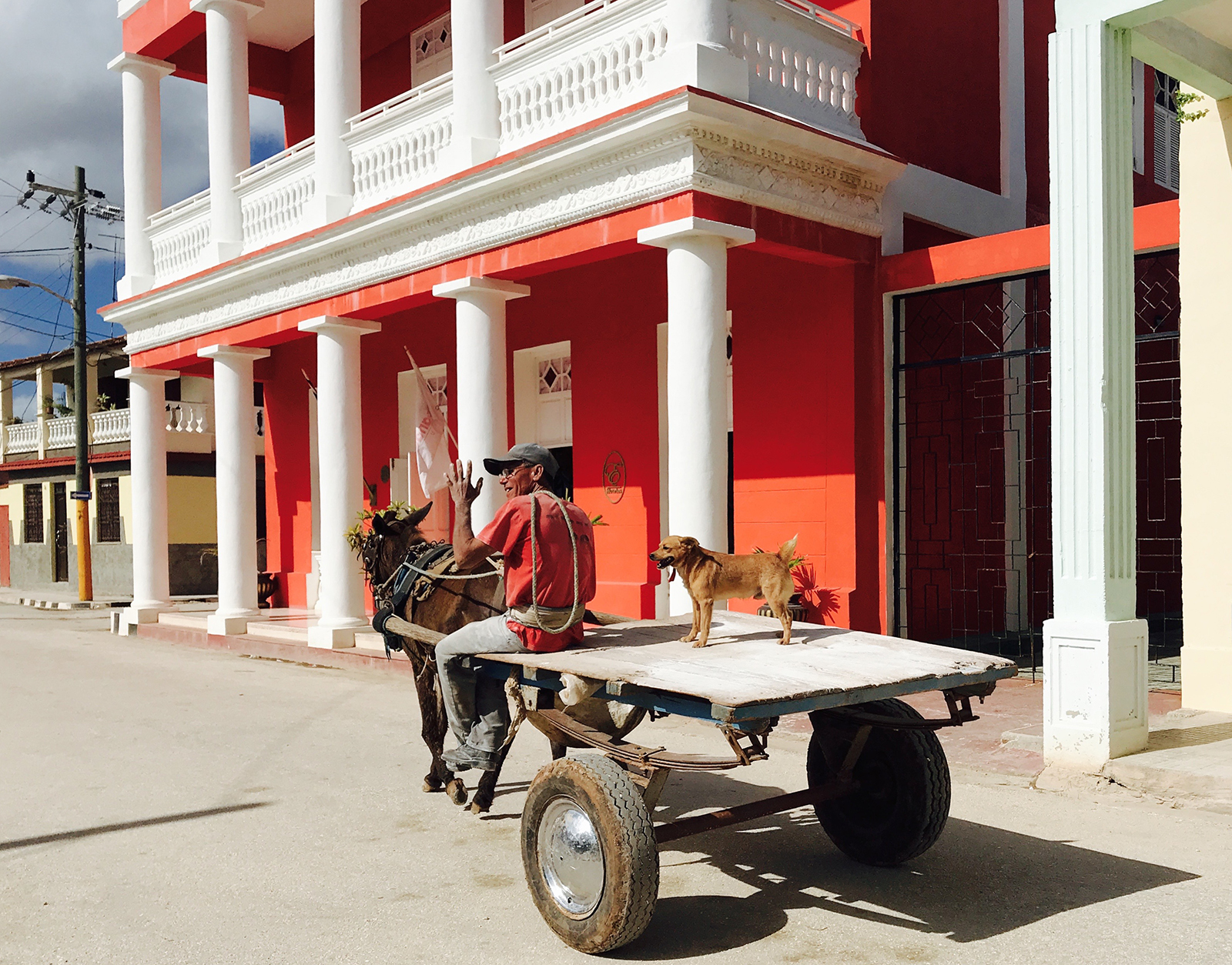 Dog riding horse cart in Gibara, Cuba