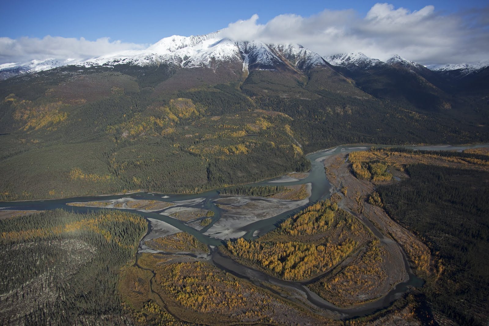 mountain forest river yukon