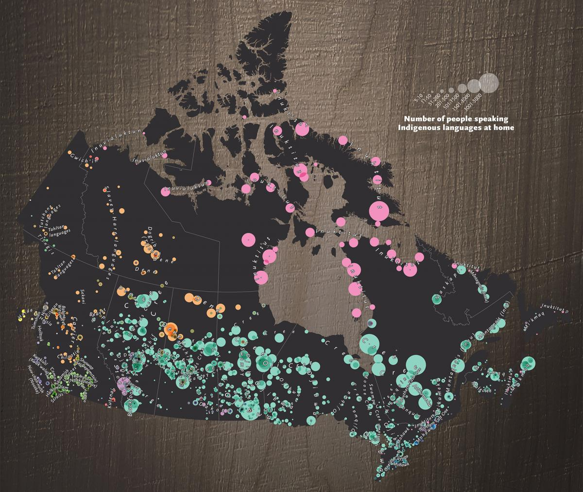 Where Indigenous languages are being spoken now in Canada. Scroll down for a closer look at this map and the country's 12 Indigenous language families. (Map: Chris Brackley/Can Geo)