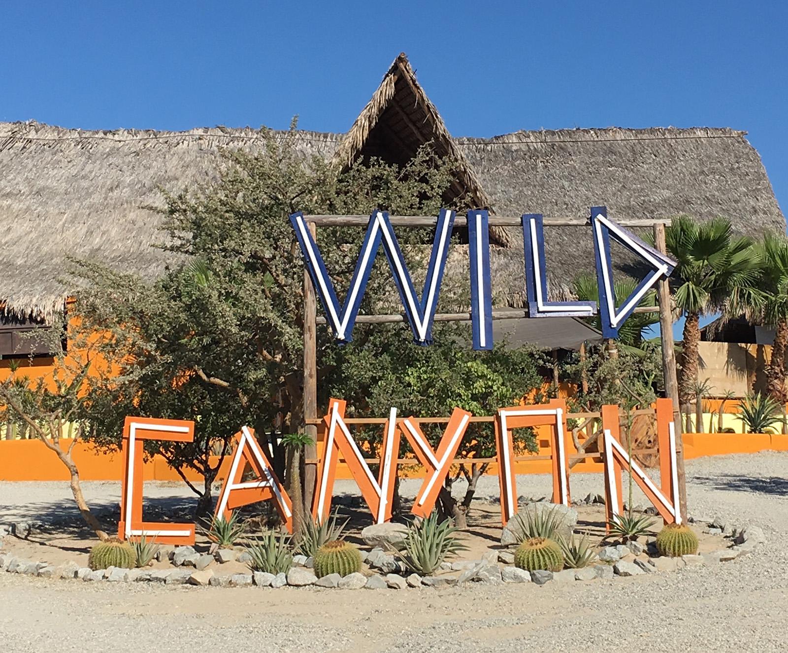 Wild canyon cabo
