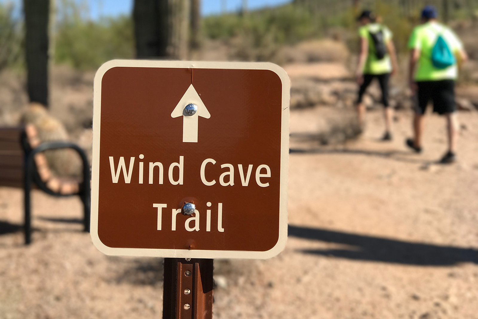 Hiking the Wind Cave trail, mesa's crown jewel in Usery Mountain regional park