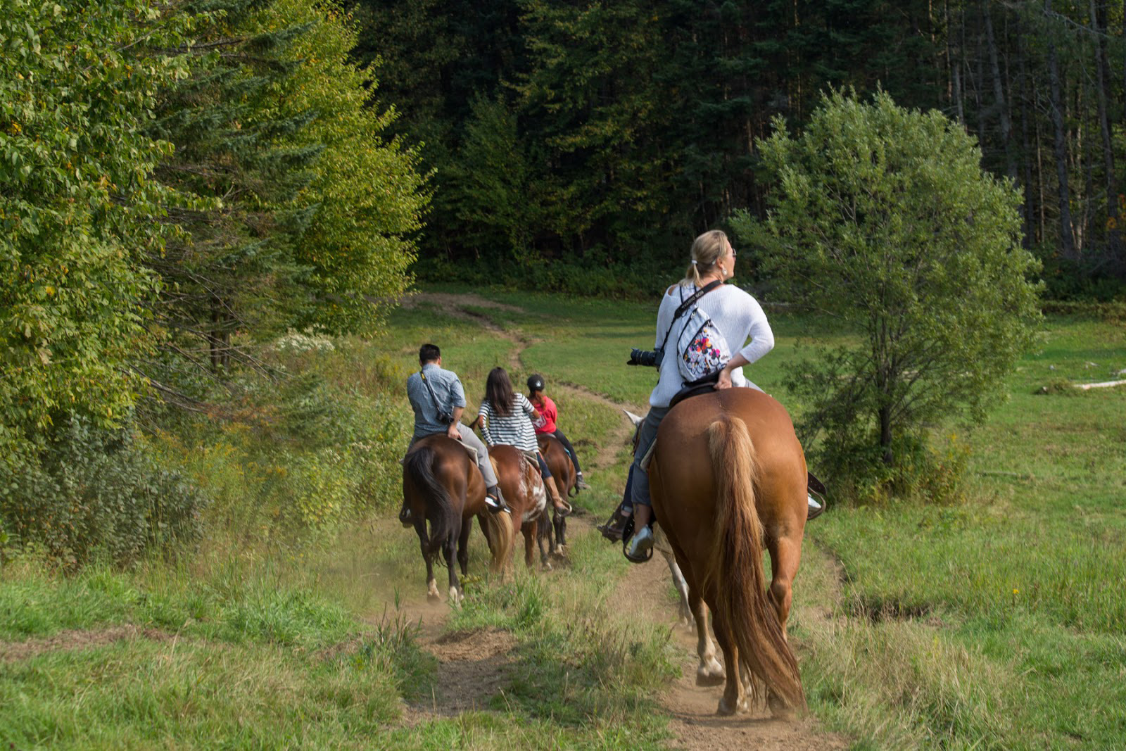 Horseback riding in the Laurentians with Jacques Cartier Excursions