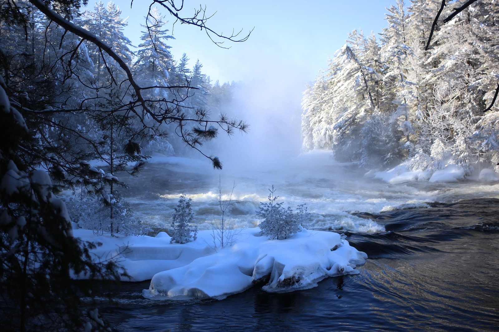 A rushing river passes snow-and-ice-covered pine trees