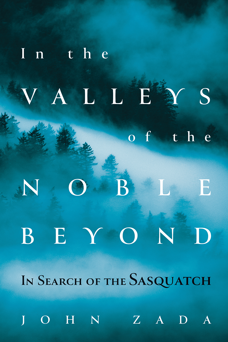 Book cover - In the Valleys of the Noble Beyond