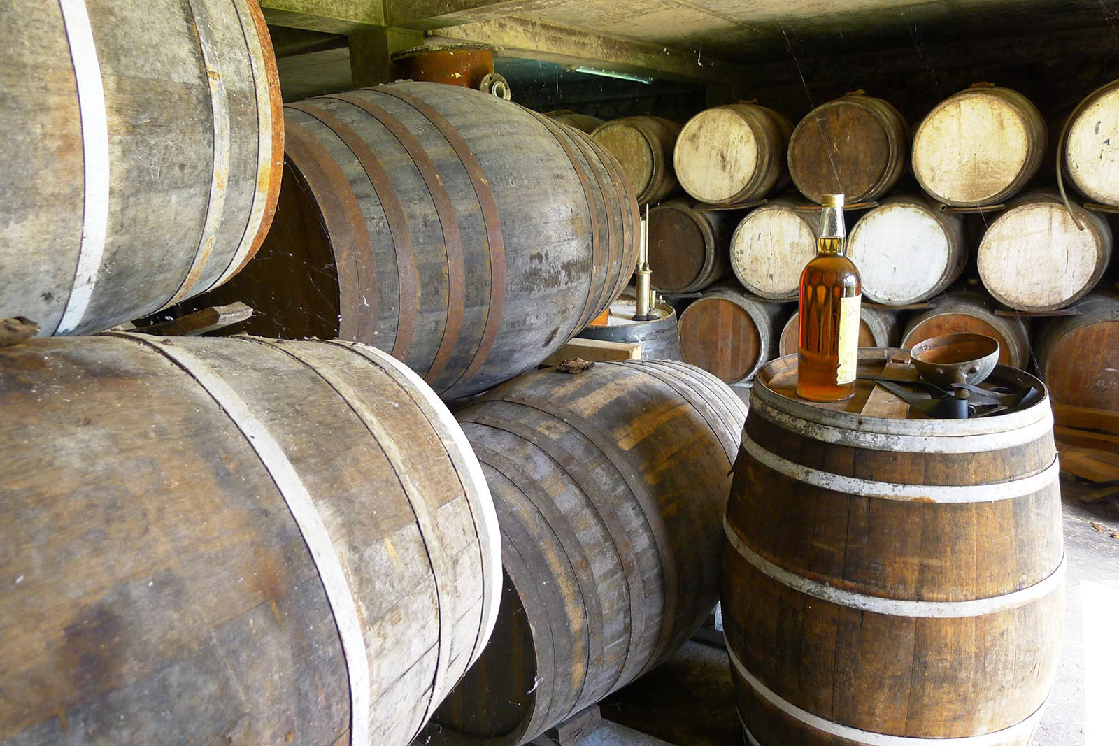 Casks of rum at Le Domaine de Séverin rum distillery