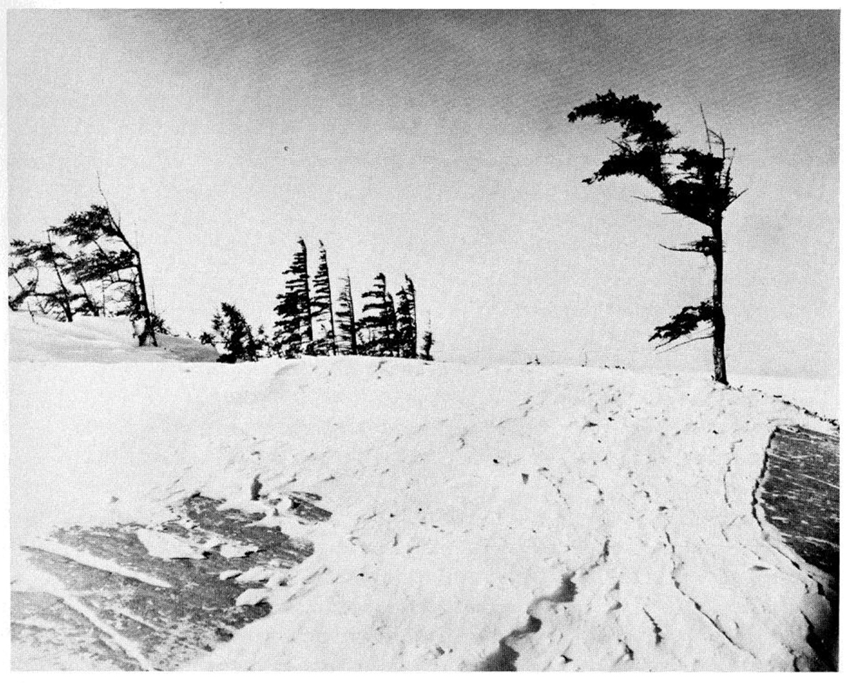 A black and white photograph showing the west bank of the Churchill River