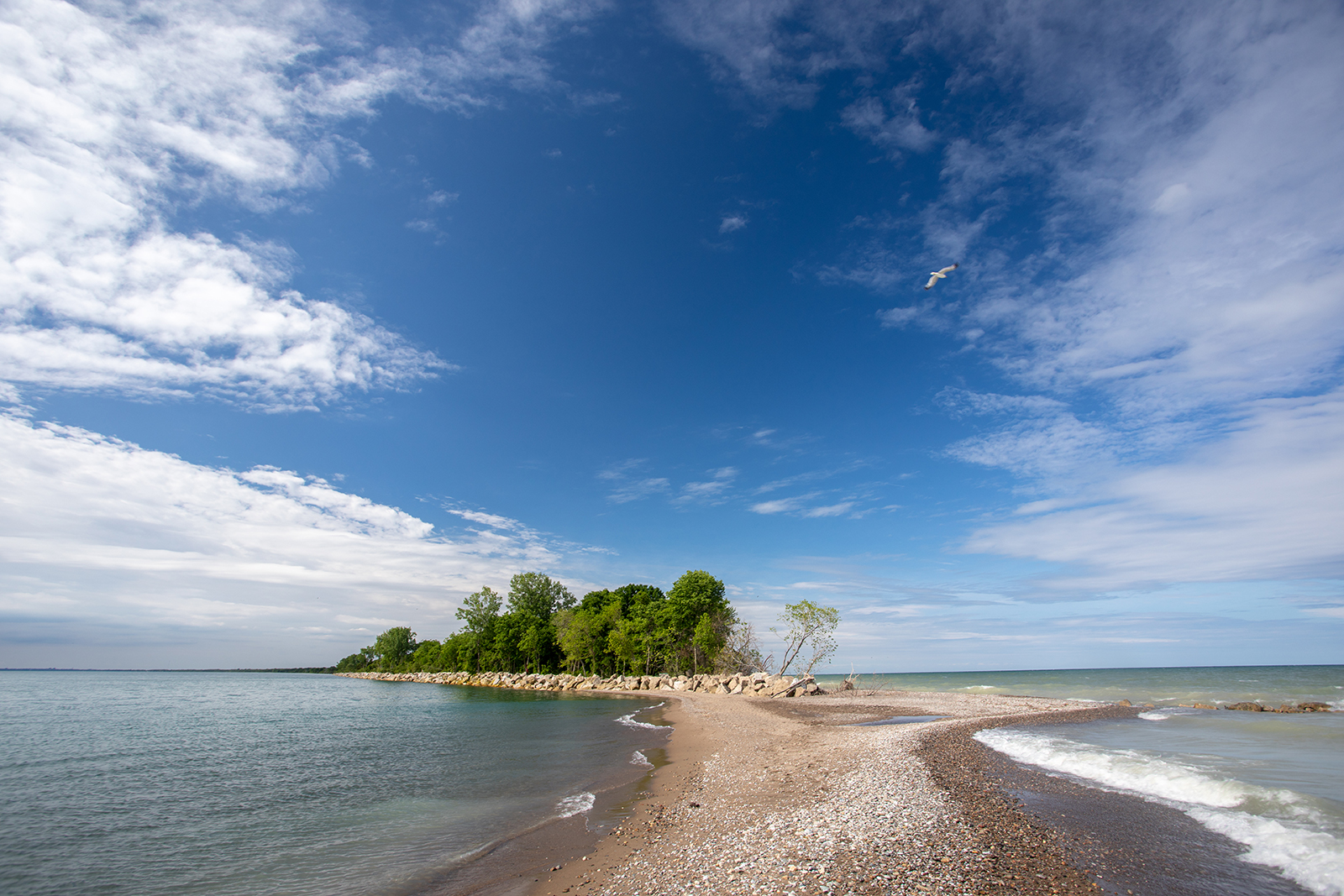 The Tip of Point Pelee National Park