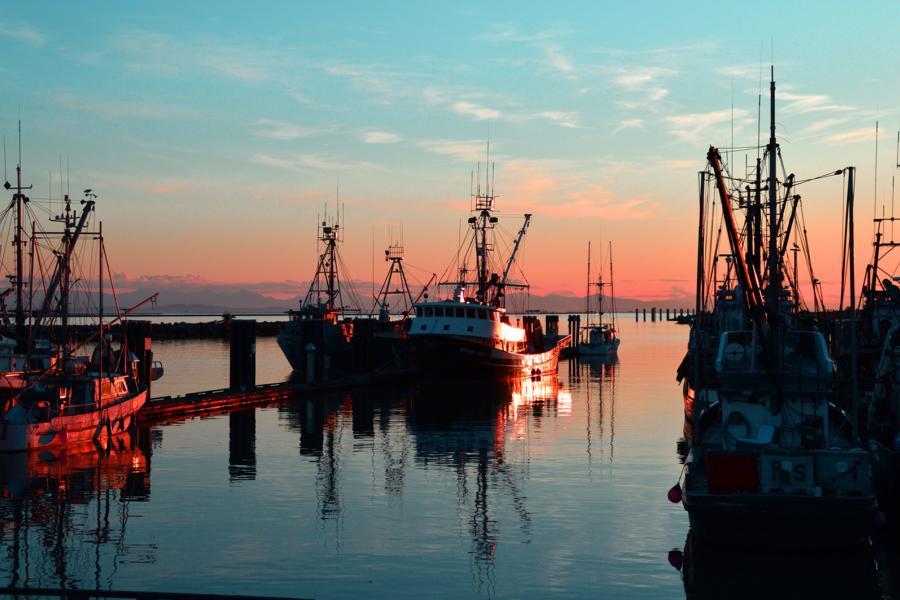 Richmond B.C. fishing fleet at sunset