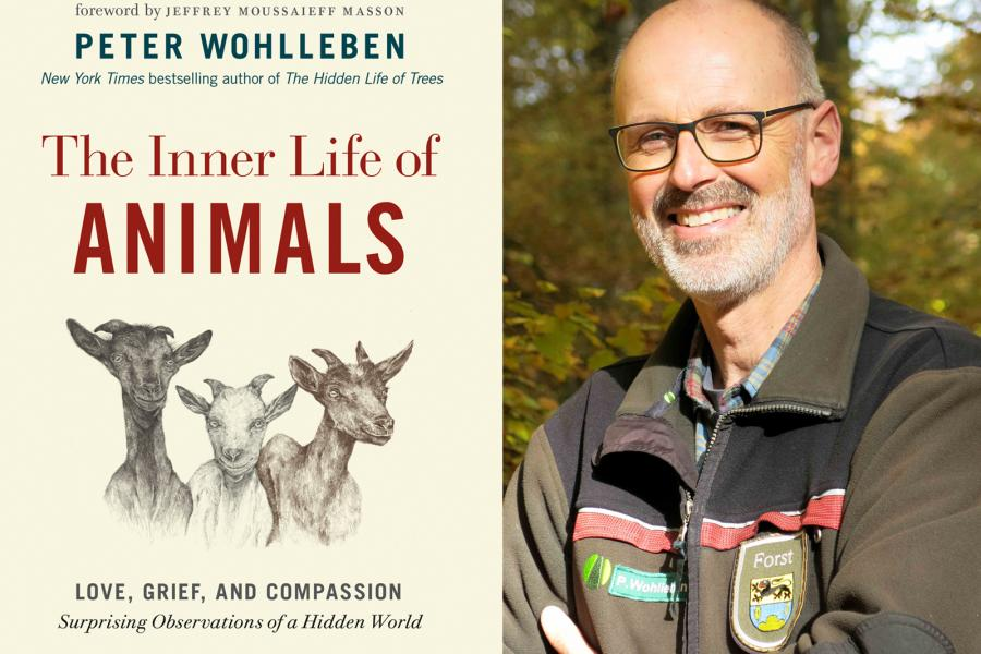 the inner life of animals peter wohlleben book cover