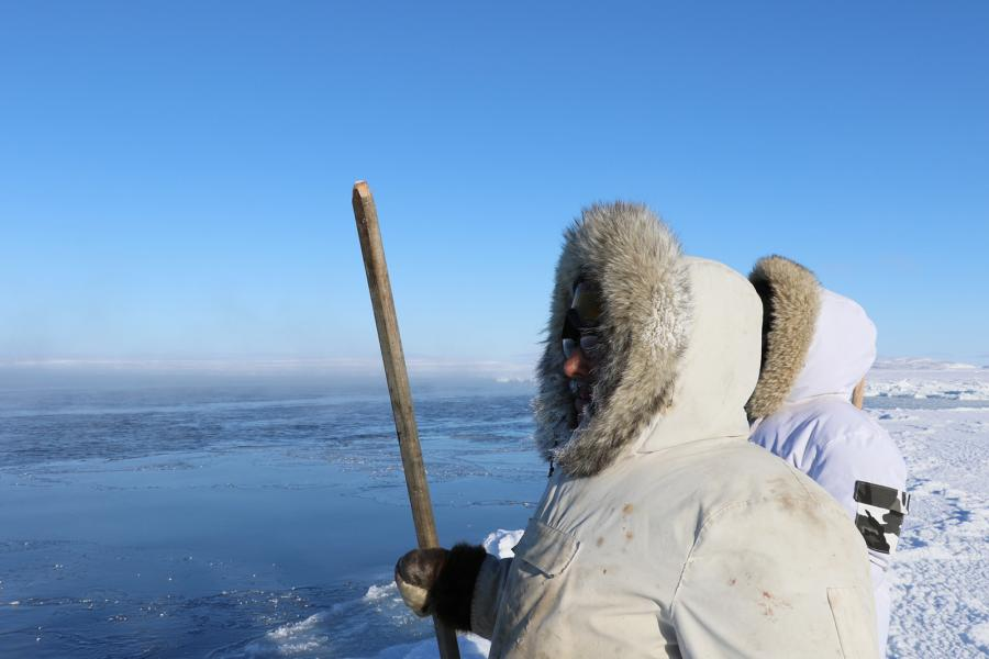 Arctic, sea ice, Hudson Bay, scientist, environment, climate change