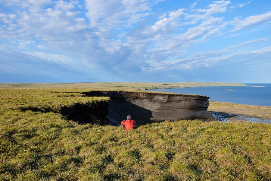 A retrogressive thaw slump on Qikiqtaruk-Herschel Island