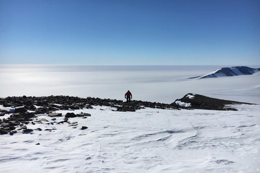 Polar Knowledge Canada, Antarctica, DNA, springtail, ice, ice shelf, climate change