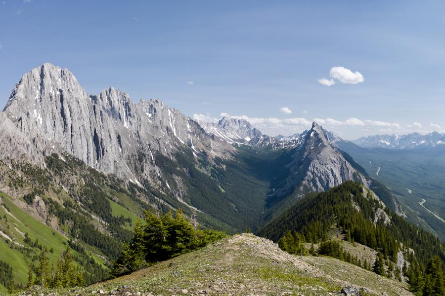 This stunning view from King Creek Ridge, Kananaskis Country, Alberta, tells a story of how fire has changed the mountain landscape. Photo: Mountain Legacy Project.