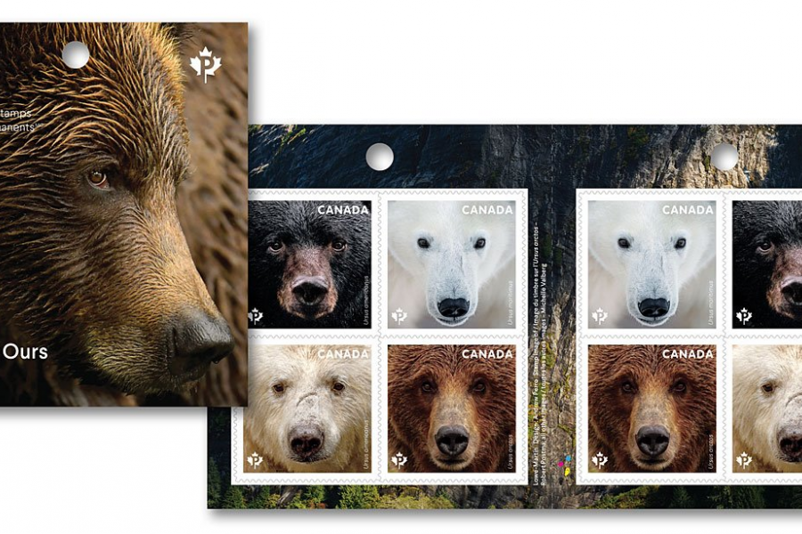 the 8 stamps that make up the Bears series from Canada Post