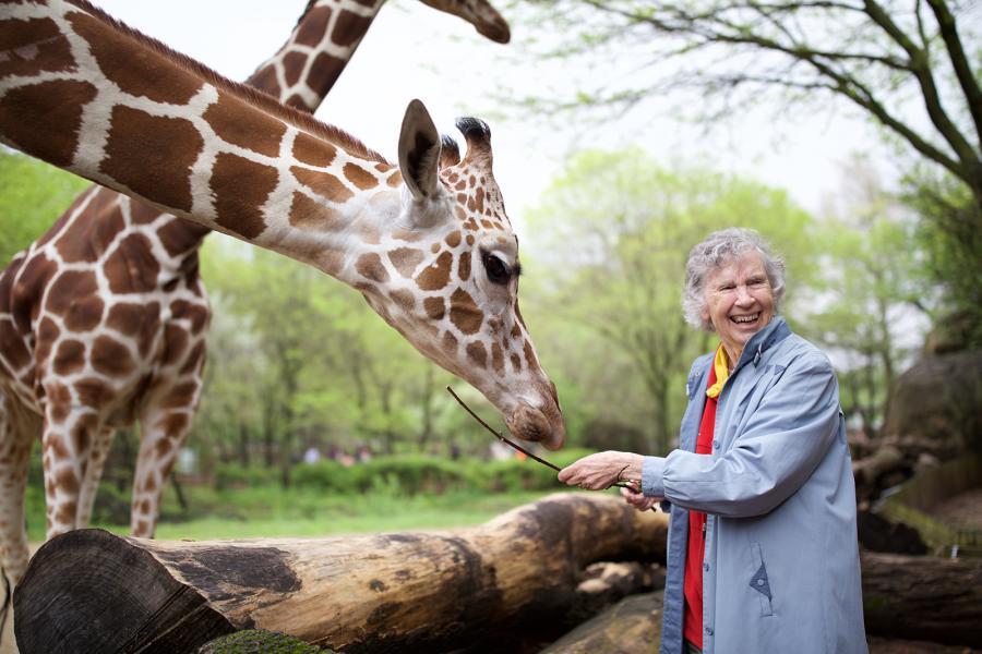 Anne Innis Dagg feeding a giraffe at Chicago's Brookfield Zoo in 2015
