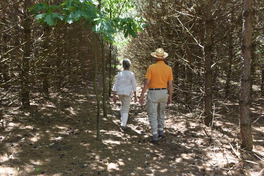 Dolf and Anne Wynia in their forest