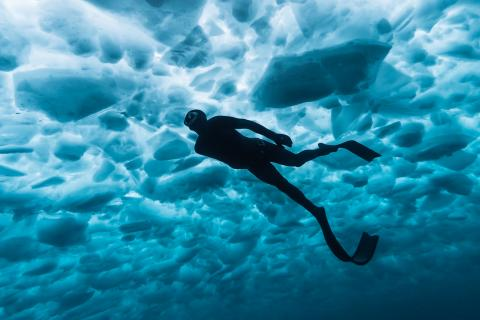 Diver Tyler Boelens glides beneath the ice of Georgian Bay