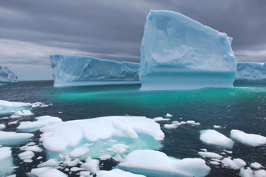 An iceberg off the coast of Newfoundland (Photo: Gérald Tapp/Wikimedia Commons)