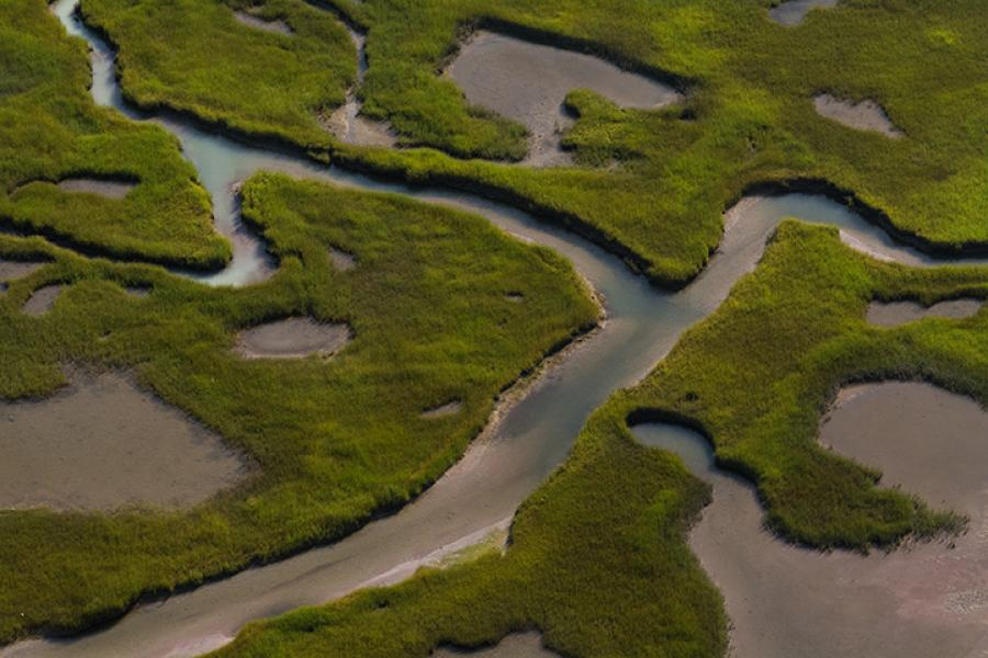 Aerial view of coastal wetlands of Clam Harbour Provincial Park. (Photo: Nick Hawkins/Canadian Geographic)