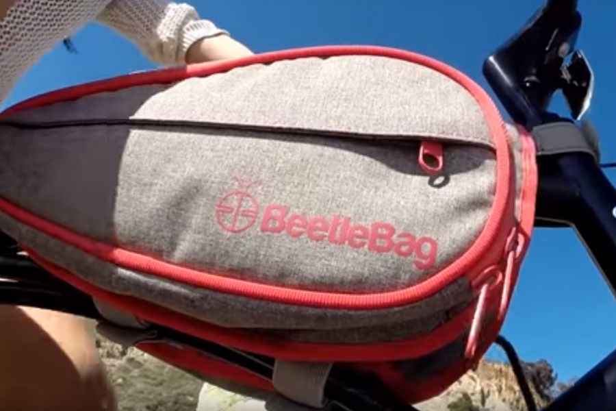 Photo: BeetleBag/YouTube