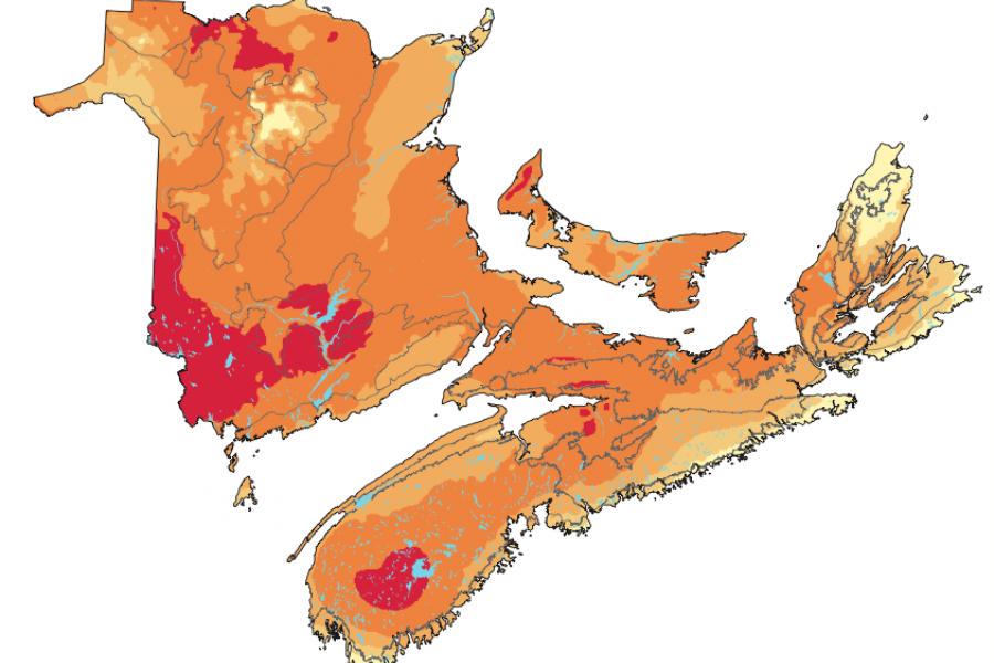 Mapping the abundance of nesting birds across the Maritimes