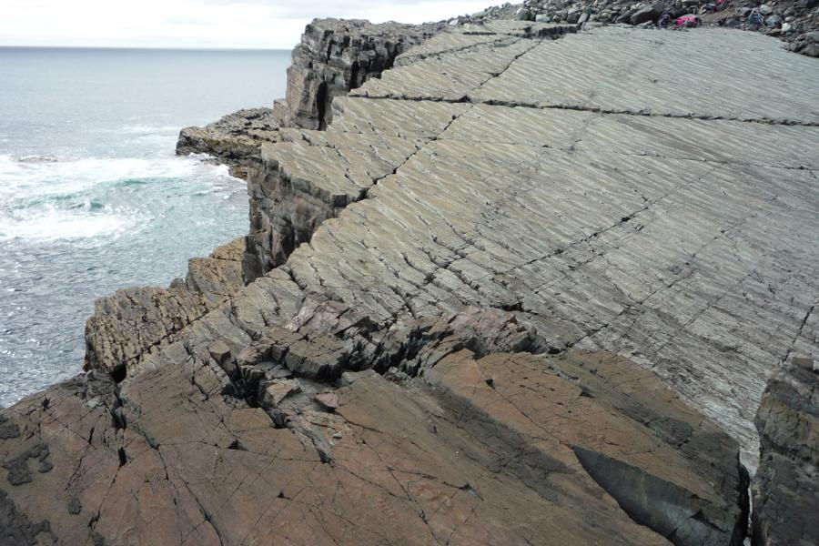 Rocks at Mistaken Point, Nfld. containing some of the oldest fossils in the world