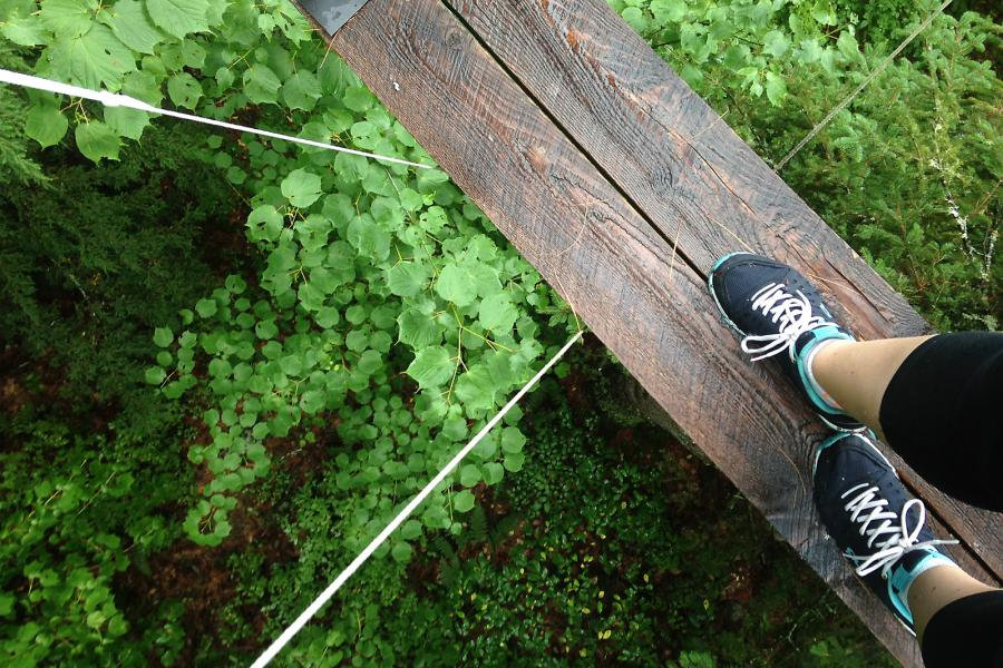 The Canopy Tour at Haliburton Forest