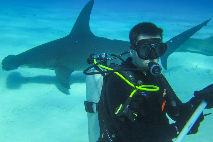 Ontario teacher diving with sharks