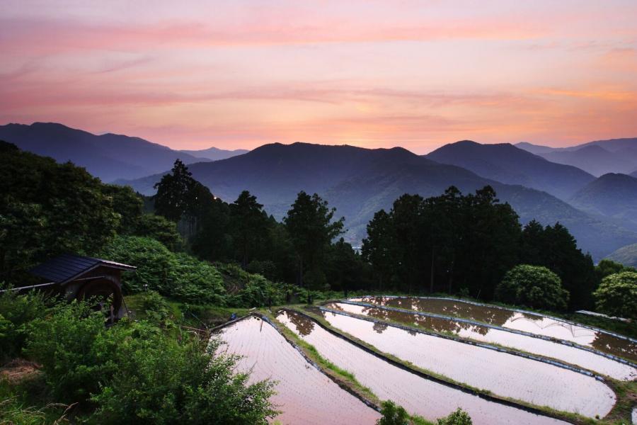 The Kii mountains at dusk, as seen on the Kumano Kodo