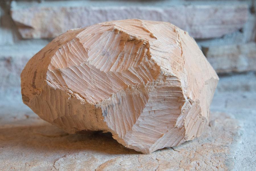 A beaver rock
