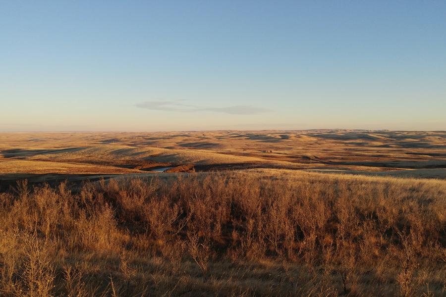 The North American grasslands at sunset