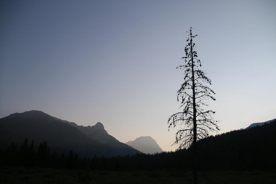 A view from Flint's Park west up the Cascade valley at sunset. Flint's Park is one of Banff's most remote backcountry campgrounds — a two-day hike from any direction.