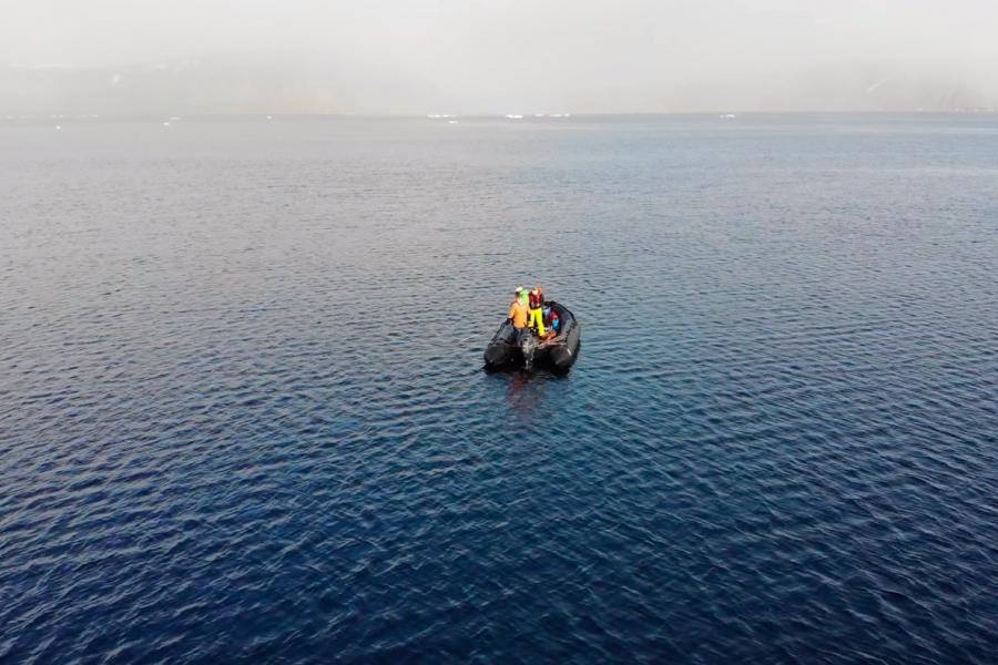 nova zembla expedition, arctic