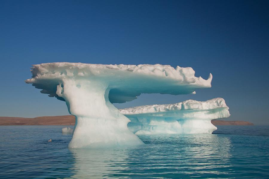 Icebergs in the Canadian High Arctic